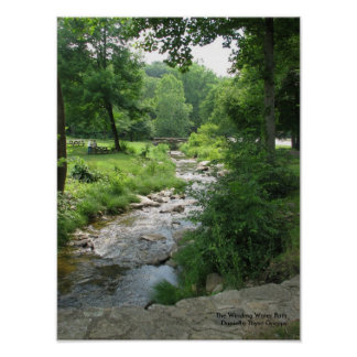 The Winding Water Path - Print