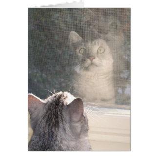 The Window Card