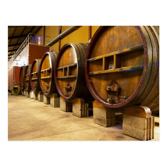 The wine cellar winery with big old wooden casks postcard