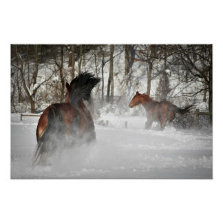 The Winter Chase Horse Poster