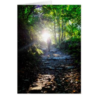 The woods of O Cebreiro Card