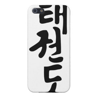 The Word Taekwondo In Korean Lettering iPhone 5 Covers