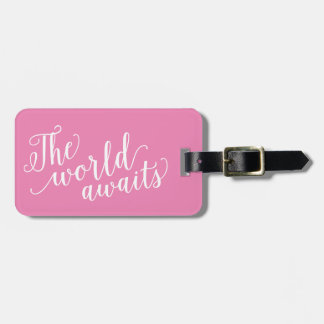 The World Awaits in Pink | Luggage Tag