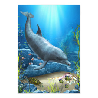 The world of the Dolphin Card