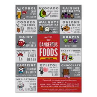 The World s Most Dangerous Foods For Dogs Print