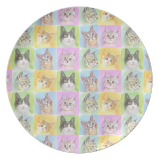 The ya it is in the cat cat densely party plate