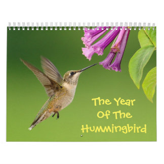 The Year Of The Hummingbird Calendar