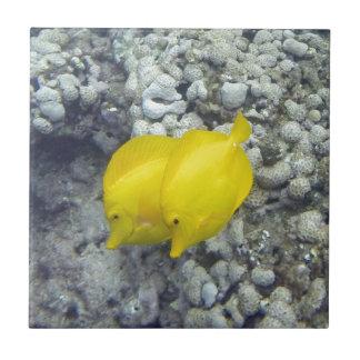 The Yellow Tang Fish Tile