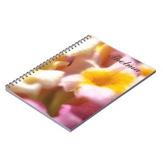 Thelma - notebook