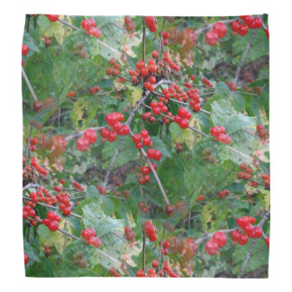 Thems the Berries Bandanna