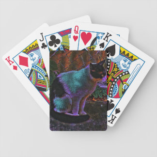 theodore nebula bicycle playing cards