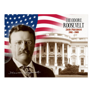 Theodore Roosevelt -  26th President of the U.S. Postcard