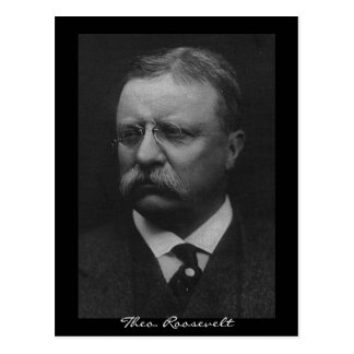 Theodore Roosevelt Cartes Postales