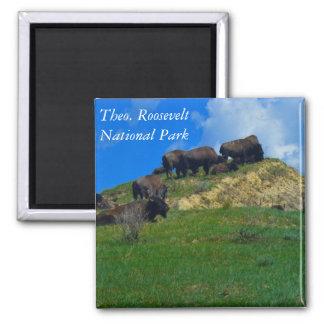 Theodore Roosevelt National Park ND magnet