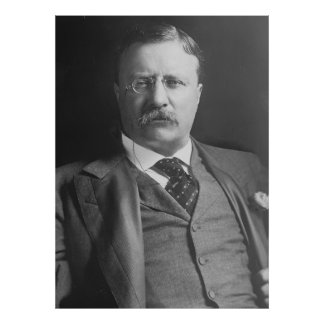 THEODORE ROOSEVELT Portrait by Harris and Ewing Poster