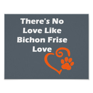 There's No Love Like Bichon Frise Love Poster