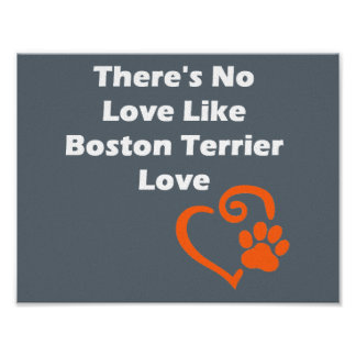 There's No Love Like Boston Terrier Love Poster