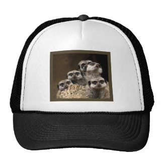 There's One In Every Crowd... Trucker Hat