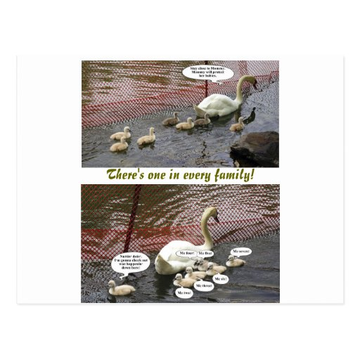 """""""There's One In Every Family!"""" Post Card"""