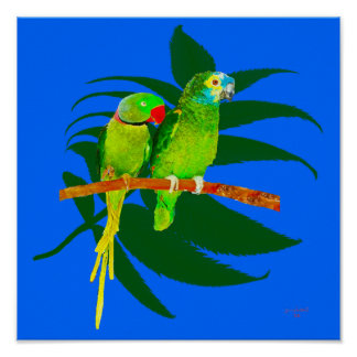 TheTwo Parrots Poster