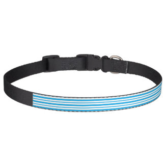 Thick and Thin Turquoise and White Stripes Pet Collar