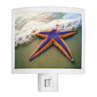 Things By the Sea Night Light