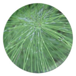 Think Green! by GRASSROOTSDESIGNS4U Dinner Plate