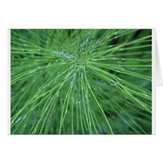 Think Green! by GRASSROOTSDESIGNS4U Greeting Card