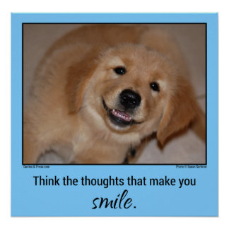 Think the thoughts...Smiling golden retriever pup Poster