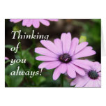 Thinking of you always! note card