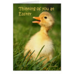 Thinking of you at easter greeting cards