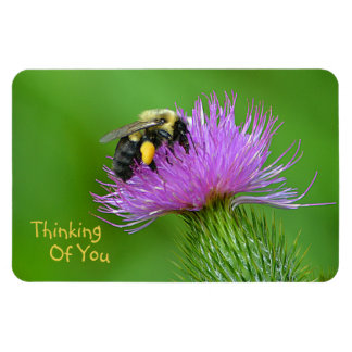 """""""Thinking Of You"""" Bee Magnet"""