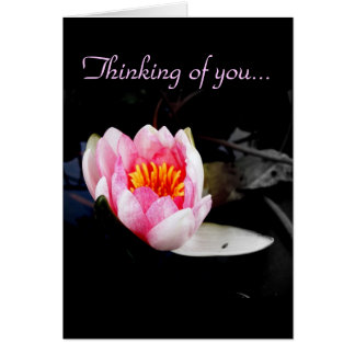 Thinking of you.../ Blank Greeting Card