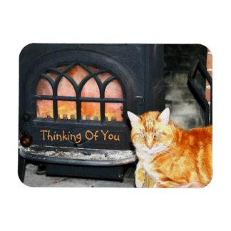 Thinking Of You Cat Rectangular Photo Magnet