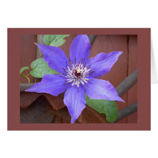 Thinking of You Clematis Note Card
