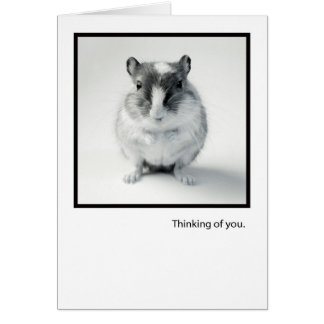 Thinking of You, Cute Mouse Photo Greeting Card