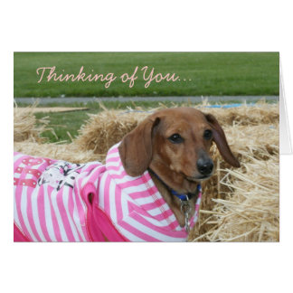 Thinking of you Dachshund greeting card