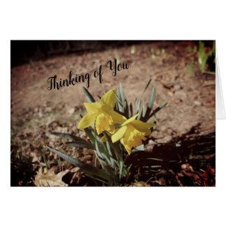 Thinking of You Daffodil Card