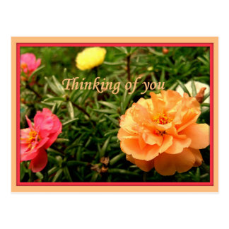 Thinking of You Flower Postcards 8 pack