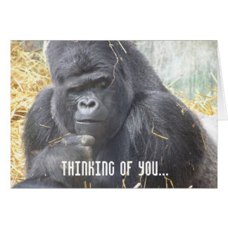 Thinking of You Gorilla Card