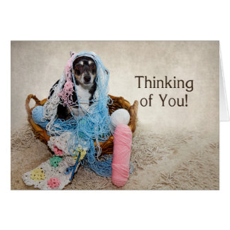 Thinking of You - HUMOR - DOG TANGLED IN YARN Card