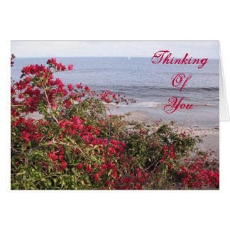Thinking Of You Malibu Card