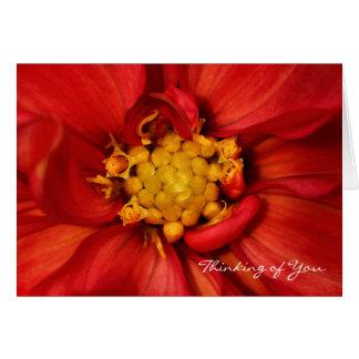 Thinking of You Orange Dahlia Greeting Card