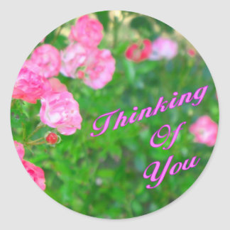 Thinking of You pink flowers Classic Round Sticker