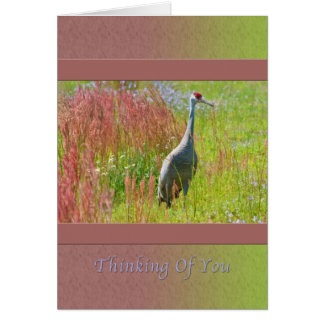 Thinking of You, Sandhill Crane, Field of Flowers Card