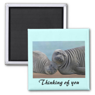 Thinking of You Seals Magnet