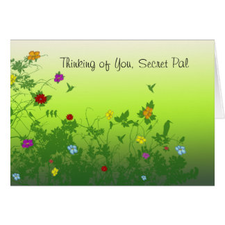 Thinking of you Secret Pal Greeting Cards