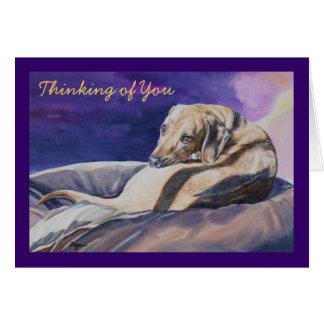 Thinking of You Sleeping Dog Card