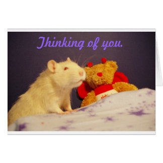 Thinking of you with Milko. Card