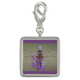 Third Dazzling Dragonflies Photo Charm